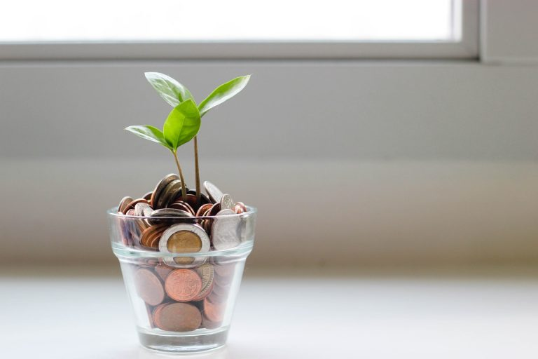 How to green your personal finances