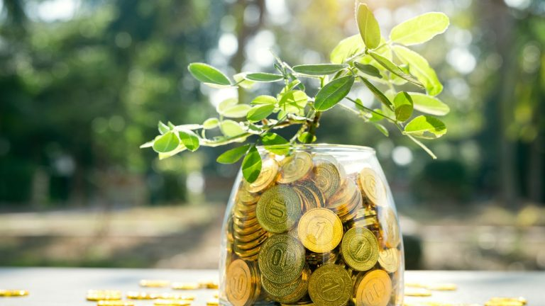 3 financial lessons from nature on World Environment Day